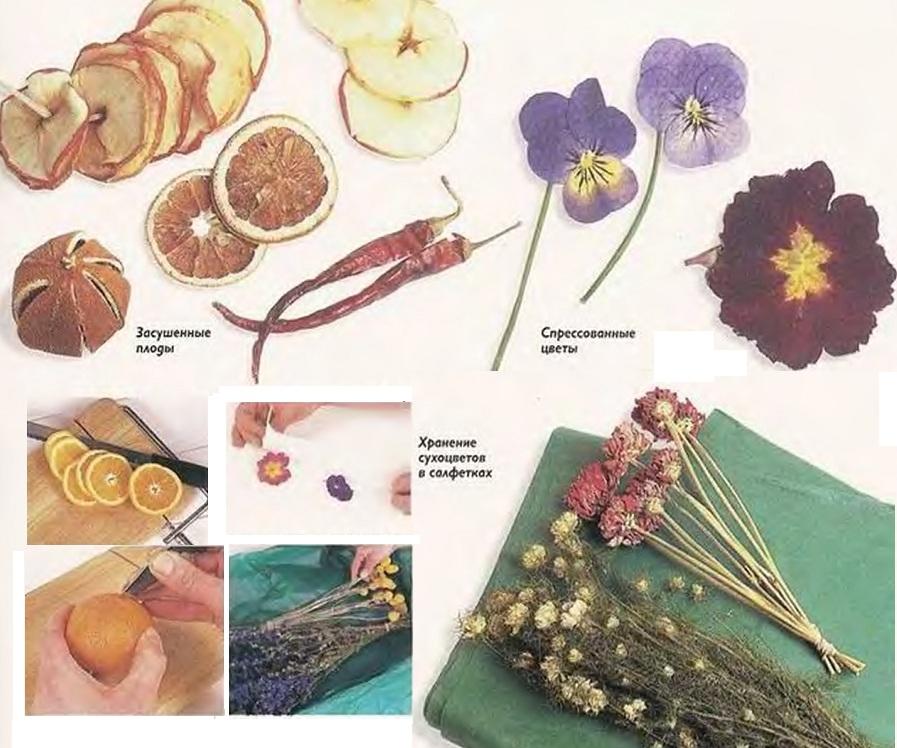 Как сохранить засушенный цветок