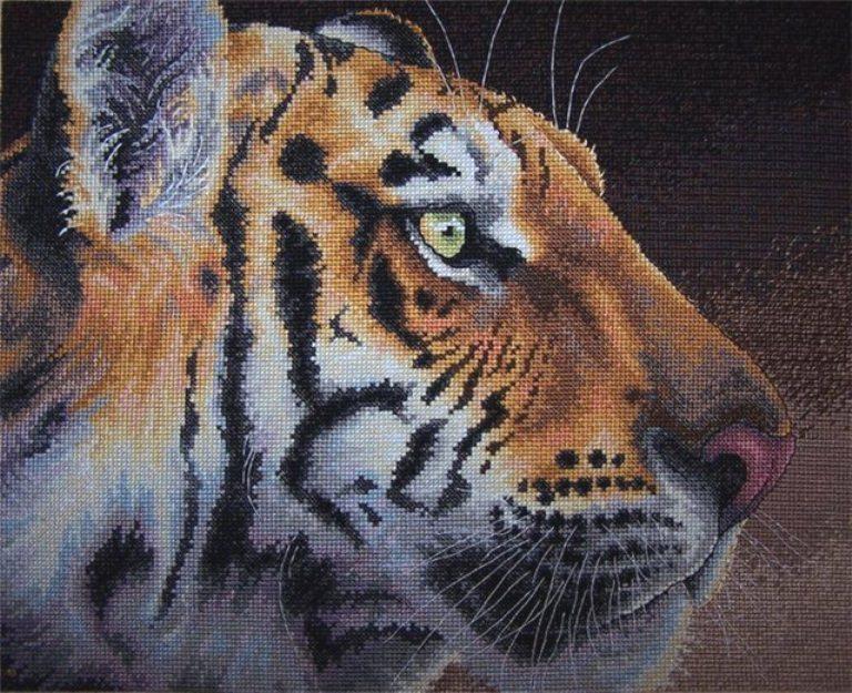 Вышивка из тигра картинки