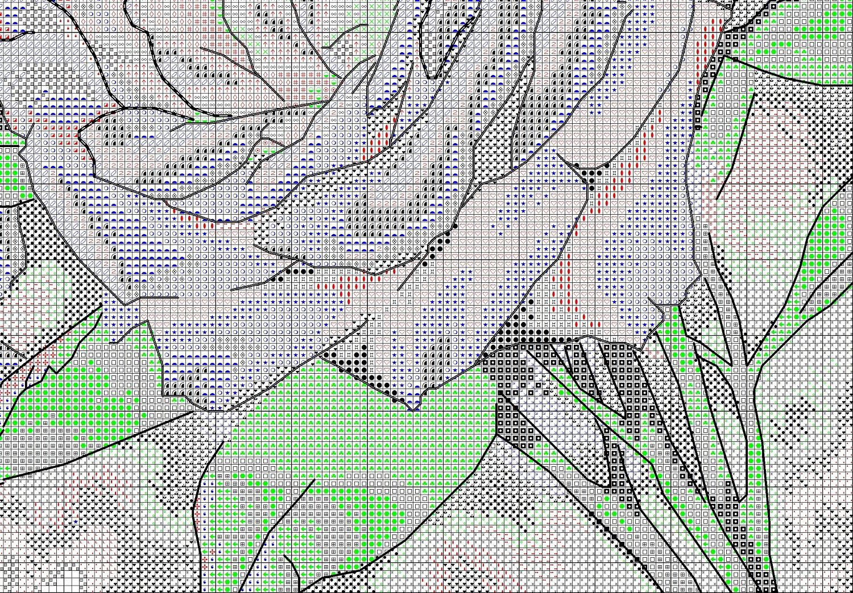схема крестиком букет белых роз