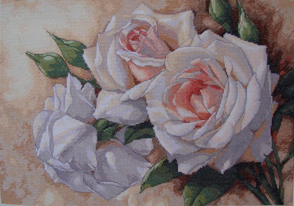 Картины с розами для вышивки 866