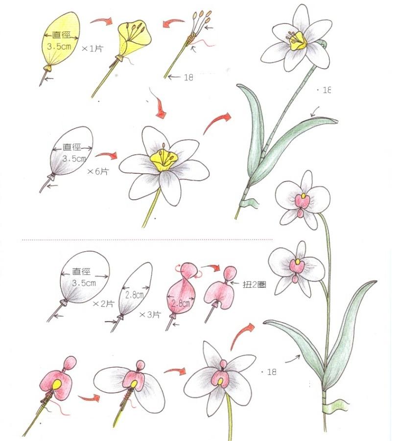 Орхидея схема рисунка