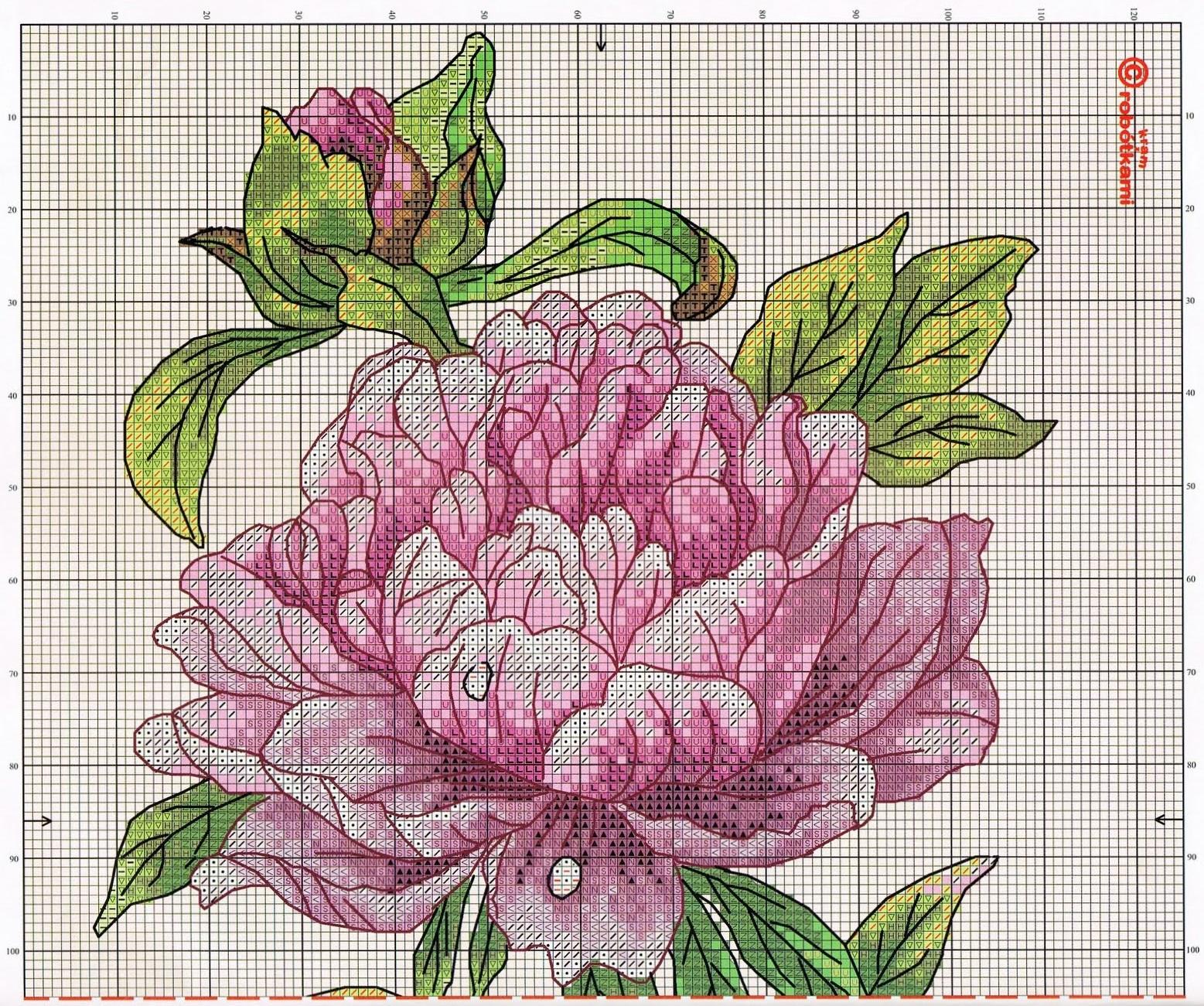 Схема для вышивания крестиком пионы