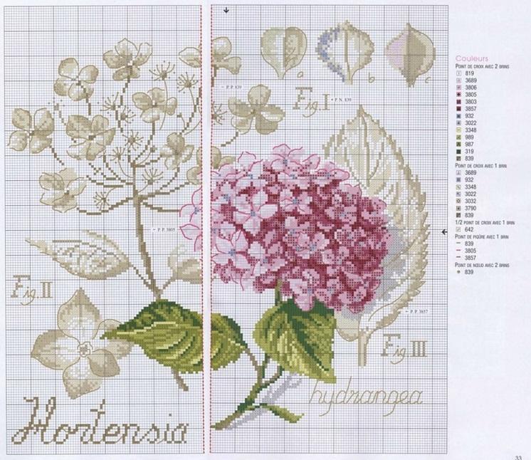 Вышивка гортензия ботаника