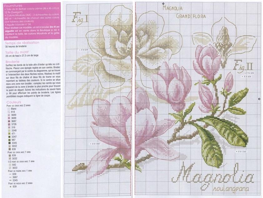 Схема вышивки магнолия