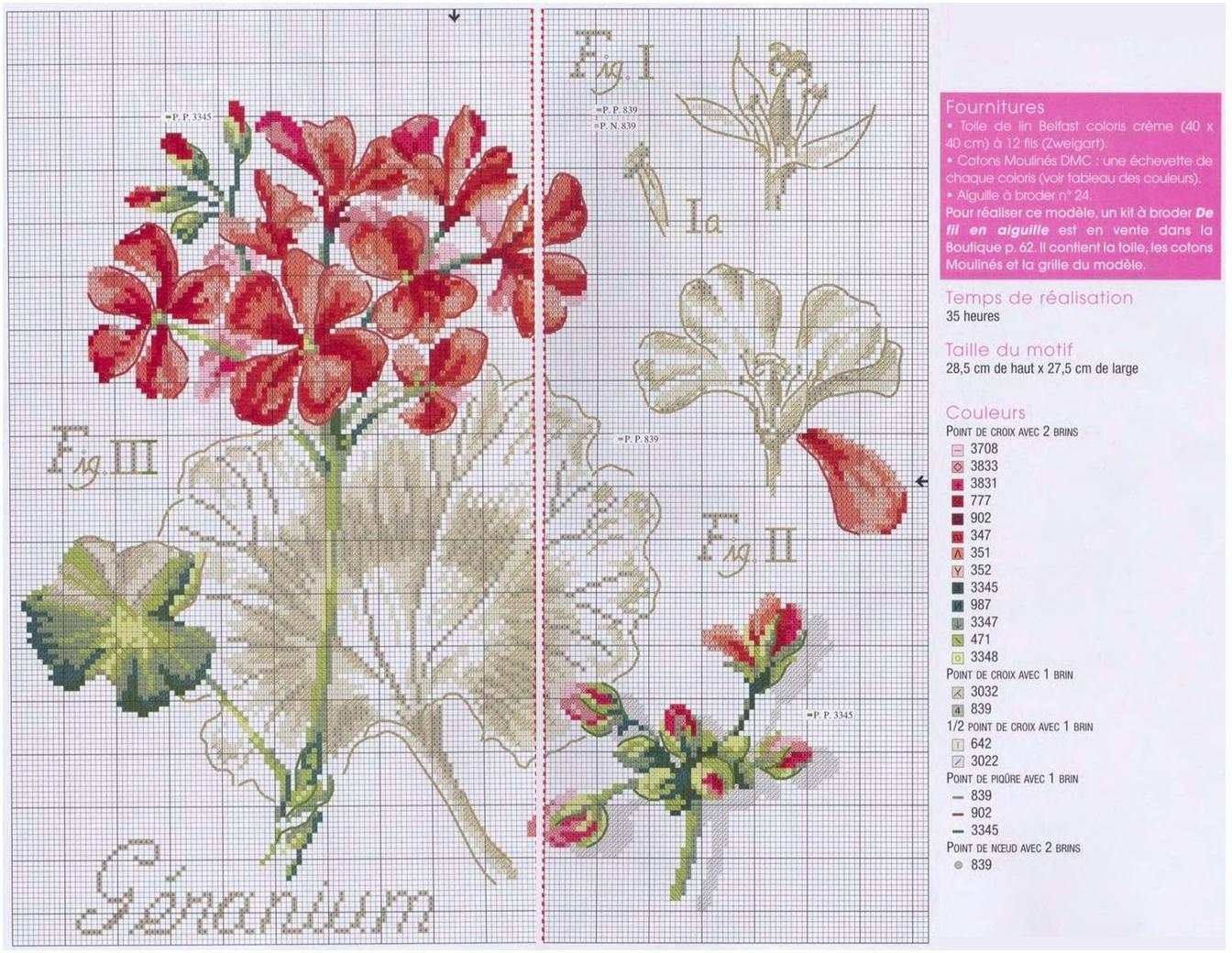 Серия ботаника вышивка скачать